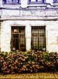 Blumen am Fenster eines alten Hauses Stockfotos
