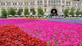Blumen-Festival im Roten Platz in Moskau Lizenzfreie Stockfotografie
