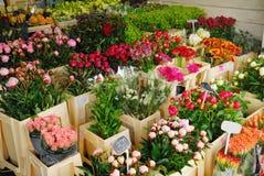 Blumen für Verkauf in Amsterdam Stockbilder