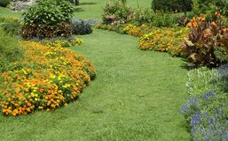 Blumen-Gärten mit Pfad Stockfoto