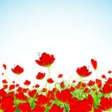 Blumen-Garten Lizenzfreie Stockbilder