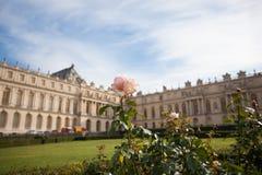 Blumen-Garten Versailles Lizenzfreie Stockfotografie