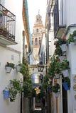 Blumen-Gasse in Cordoba Stockfotografie