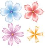 Blumen gefärbt Lizenzfreie Stockfotografie