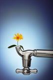 Blumen gekeimt im Metallhahn Lizenzfreie Stockbilder