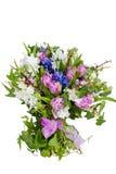 Blumen getrennt auf weißem Hintergrund stockbilder