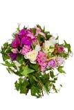 Blumen getrennt auf weißem Hintergrund lizenzfreie stockfotografie