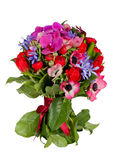 Blumen getrennt auf weißem Hintergrund stockbild