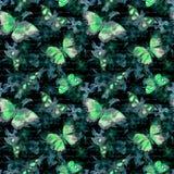 Blumen, glühende Schmetterlinge, übergeben Anmerkung des schriftlichen Textes am schwarzen Hintergrund watercolor Nahtloses Muste Lizenzfreie Stockfotos