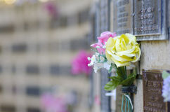 Blumen am Grab im Kirchhof Stockfotos