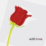 Blumen-Gruß-Karte Stockfotos