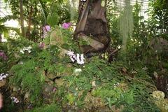 Blumen Guter Hintergrund stockfoto