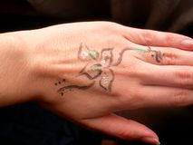 Blumen-Hand Stockfotos