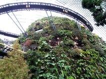 Blumen-Haube, Gärten durch die Bucht, Singapur lizenzfreie stockfotografie