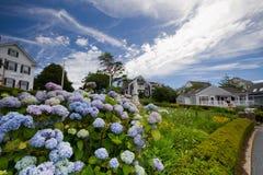 Blumen-Haus Lizenzfreie Stockfotografie