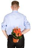 Blumen hinter einer Rückseite Stockfotos