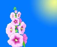 Blumen-Hintergrund Stockfoto