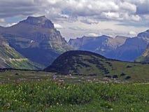 Blumen - Hintergrund Berge Stockfoto