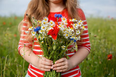 Blumen in ihren Händen wildflowers Stockbilder
