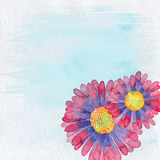Blumen-Illustrations-Hintergrund Stockbilder