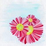 Blumen-Illustrations-Hintergrund Stockfotografie