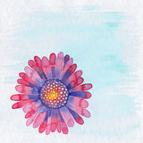 Blumen-Illustrations-Hintergrund Lizenzfreies Stockbild