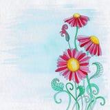Blumen-Illustrations-Hintergrund Stockbild