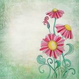 Blumen-Illustrations-Hintergrund Lizenzfreie Stockfotografie