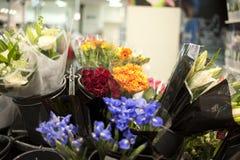 Blumen im Blumensystem Lizenzfreies Stockfoto