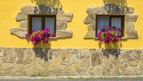 Blumen im Fenster eines Hauses Lizenzfreies Stockfoto