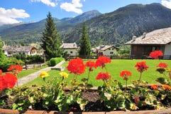 Blumen im italienischen Dorf Lizenzfreies Stockbild