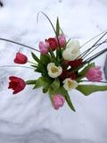 Blumen im Schnee Lizenzfreies Stockfoto