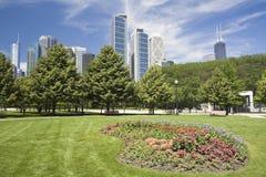 Blumen in im Stadtzentrum gelegenem Chicago Stockbild