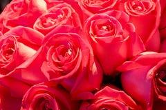 Blumen im Supermarkt Lizenzfreie Stockfotos