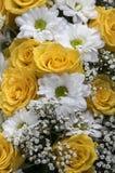 Blumen im Weiß und im Gelb Stockfotografie