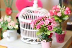 Blumen in irgendeinem Topf Stockfoto