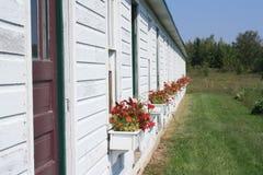 Blumen-Kasten Lizenzfreies Stockfoto