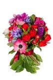 Blumen lokalisiert auf weißem Hintergrund lizenzfreie stockfotografie