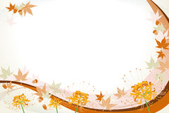 Blumen: lycoris und Eichel und Ahornholz Lizenzfreies Stockfoto