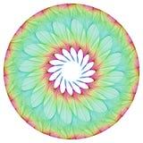 Blumen-Mandala lizenzfreies stockfoto