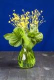 Blumen mit grünen Blättern in einem Vase Lizenzfreies Stockfoto