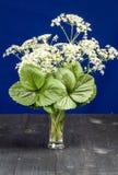 Blumen mit grünen Blättern in einem Vase Lizenzfreies Stockbild