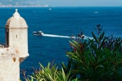 Blumen mit unscharfem Meer- und Prinz ` s Palast in Monaco stockfoto