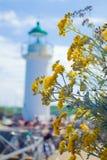 Blumen nahe dem großartigen Leuchtturm Lizenzfreie Stockbilder