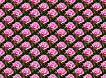 Blumen nahtlos lizenzfreies stockbild
