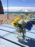 Blumen an Newquay-Strand in Cornwall Stockbild