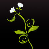 Blumen oder Diamanten (Vektor) Lizenzfreies Stockfoto