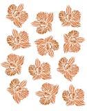 Blumen-Orangen-Muster OrÑ  verstecktes Lizenzfreies Stockbild