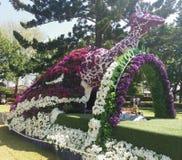 Blumen-Pfau Stockbilder