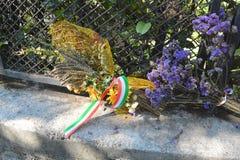 Blumen am Platz, in dem Benito Mussolini getötet wurde lizenzfreie stockfotos